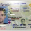 buy California fake id for online in near me
