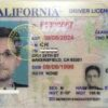 California fake ID for sale online
